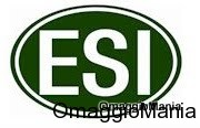 Logo ESI