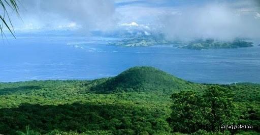 campione omaggio tè alle erbe della foresta amazzonica