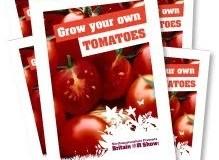 campioni omaggio semi di pomodoro 2