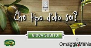 vinci fornitura di olio extravergine di oliva