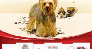 concorso a premi Hill's Piccoli cani, grandi pasticci