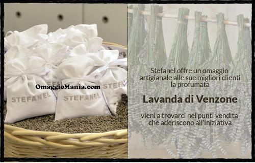 Lavanda di Venzone omaggio da Stefanel