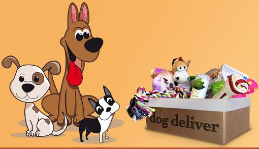 DogDeliver - diventa tester con ProvatodaVoi di AlFemminile