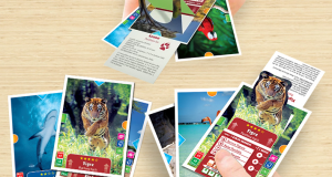 Animal Action 3D Card da Kinder e Focus