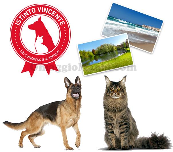 concorso a premi Royal Canin Istinto Vincente