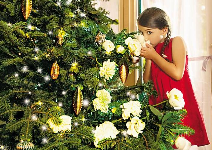 buoni sconto Bottega Verde Natale
