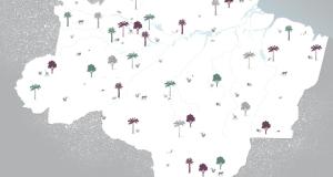 invia gli auguri e regala un albero in Brasile