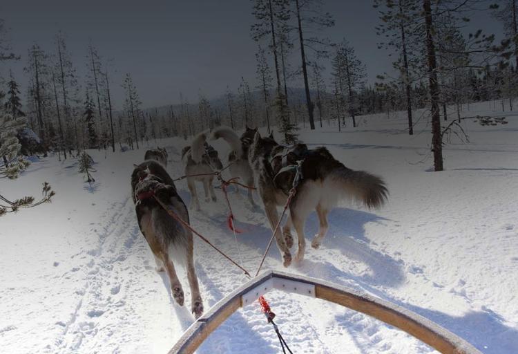 vinci viaggio in Finlandia con Buone Ceste di Fine Living