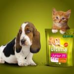 buoni sconto Ultima Petfood cani gatti