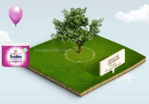 pianta un albero con Scottex