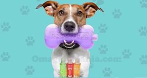 campione omaggio DoggyHair
