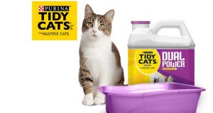 Tidy Cats Dual Power Purina