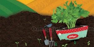 kit giardiniere Kellogg's