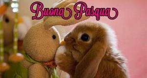 Buona Pasqua da OmaggioMania