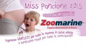 Miss Pancione 2015 Zoomarine