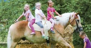 vinci vacanza con i cavalli in Austria