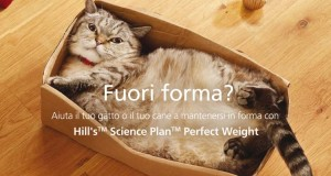 buono sconto Hill's Perfect Weight