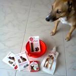kit cane Estate ricevuto omaggio da Teresa