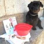 kit estate cane ricevuto da Silvia
