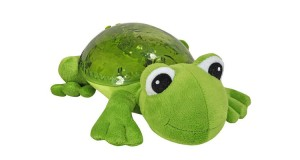 Tranquil Frog CloudB
