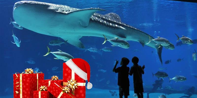 concorso Acquario di Genova cenone pre-natalizio