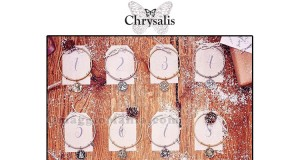 concorso 12 Days of Chrysalis