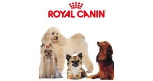 campioni omaggio Royal Canin per i cani di razza