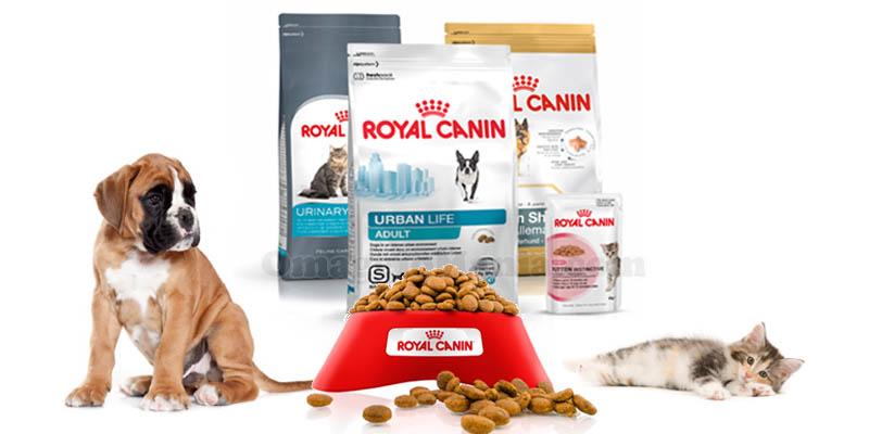 concorso Ciotola Pulita Royal Canin cane e gatto