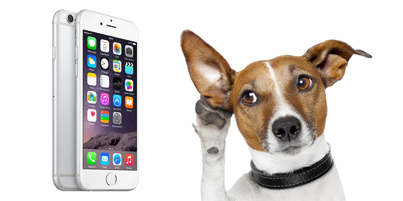 vinci iPhone 6 con ZampaVacanza