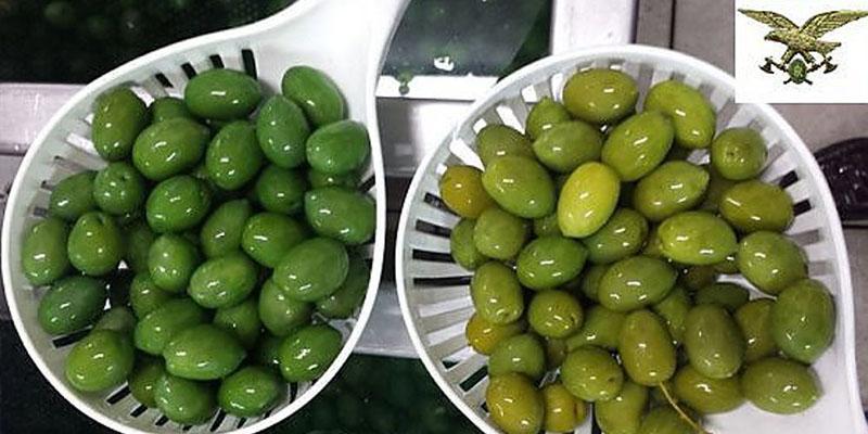 olive colorate e olive non colorate