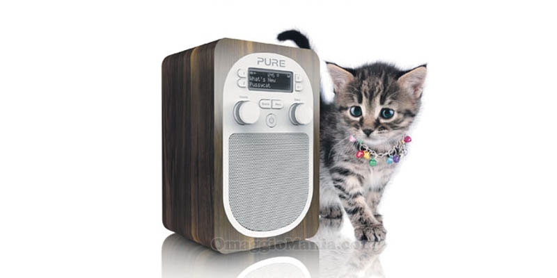 radio Evoke D2