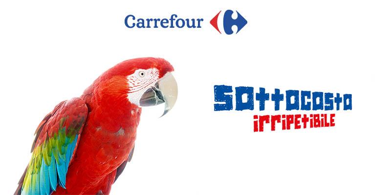 Sottocosto Irripetibile Carrefour
