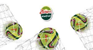 Soccer Ball Zespri