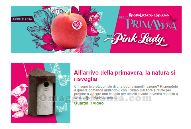 vinci casetta per uccelli con Pink Lady