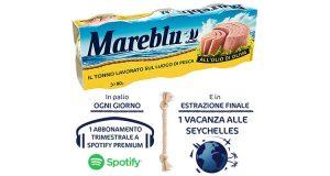concorso Mareblu vinci un mare di musica