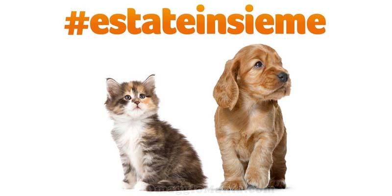 concorso Royal Canin Estate Insieme
