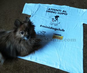 Mini Dog Kit di Cristina 3