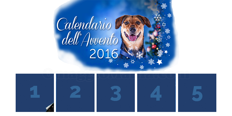 calendario Avvento Innovet 2016