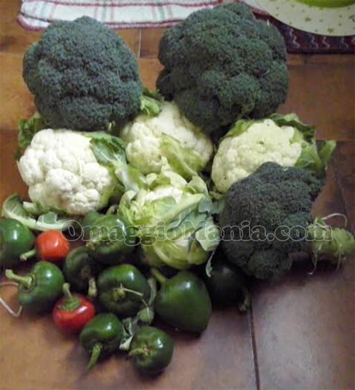 kit frutta e verdura crea il tuo orto Ferrero di Miluessa