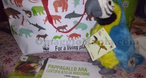 pappagallo peluche e certificato di adozione di Miluessa