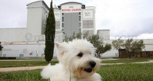 campus Royal Canin