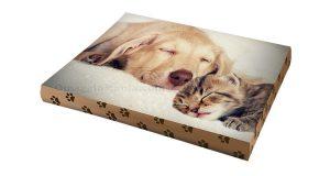 cuscino personalizzato con Pet Lover Day