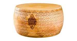 forma di Grana Padano dop riserva 24 mesi