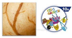indovina l'immagine e vinci set Stocker Kids Garden