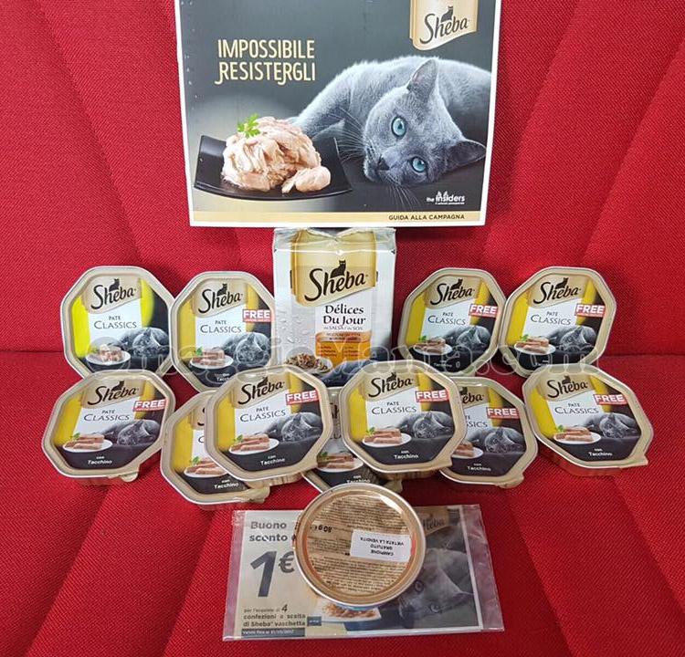 kit di prodotti Sheba di Tiziana con The Insiders