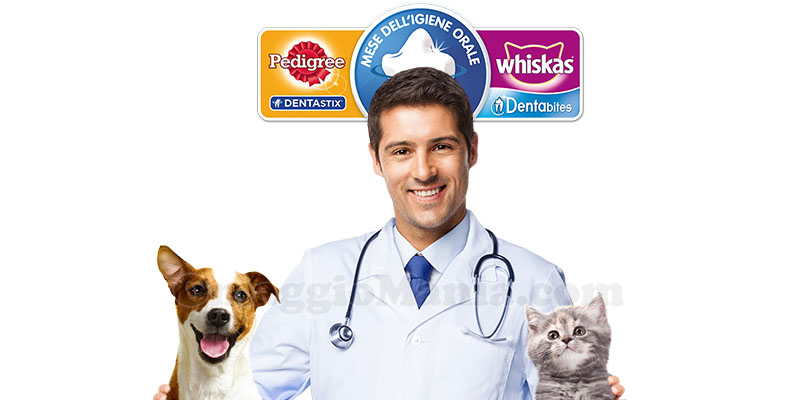 mese dell'igiene orale del cane e del gatto