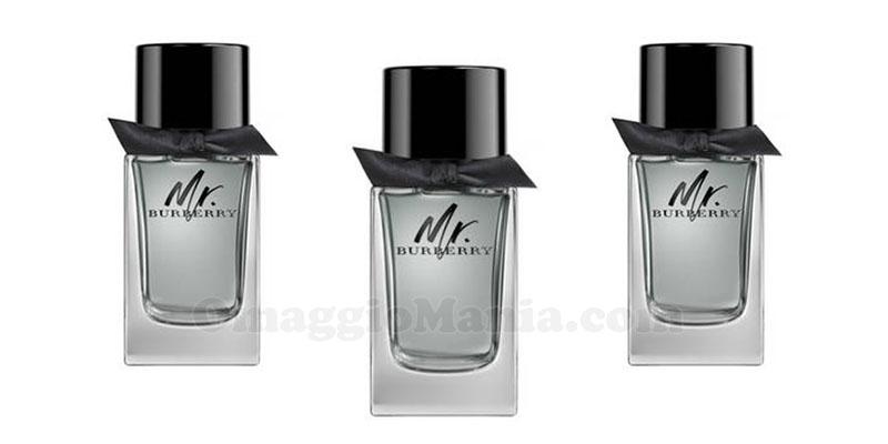 Mr.Burberry Eau de Parfum