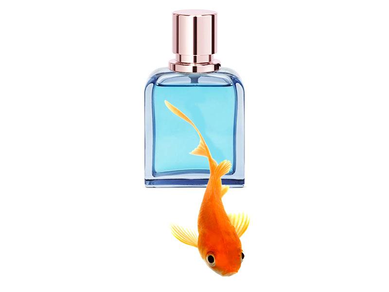 Parfum DeMar pesce