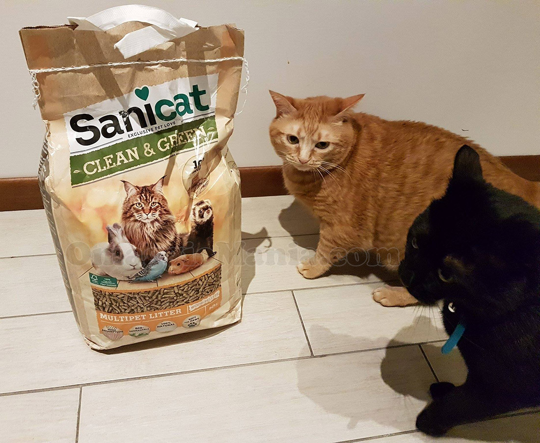 lettiera Sanicat Clean & Green di VikiBot