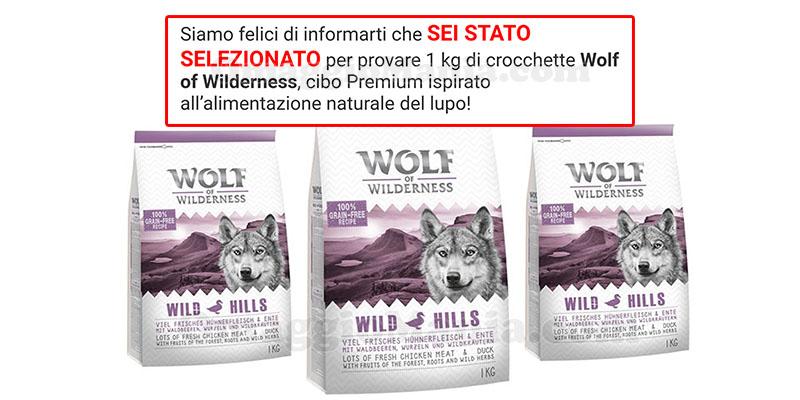 selezione tester crochette Wolf of Wilderness